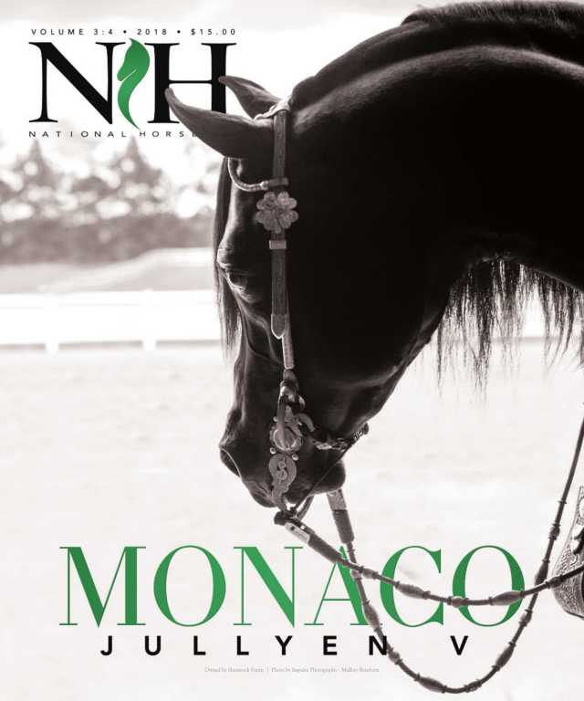 Cover of  National Horseman Arabian Magazine
