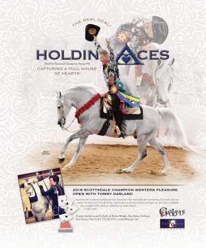 NHA v.3:2 2018 National Horseman Arabian Advertiser Gallery