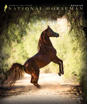 Cover of NHA v.2:2 2017 National Horseman Arabian Advertiser Gallery