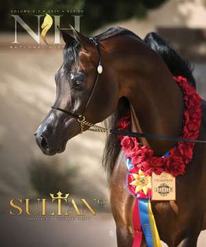 Cover of NHA v.4:2 2019 National Horseman Arabian Advertiser Gallery