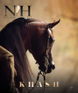 Cover of NHA v.4:1 2019 National Horseman Arabian Advertiser Gallery