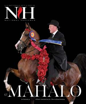 Cover of NHA v.4:5 2019 National Horseman Arabian Advertiser Gallery