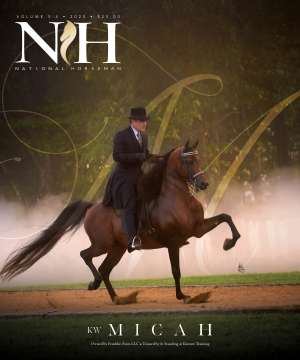 Cover of NHA v.5:4 2020 National Horseman Arabian Advertiser Gallery